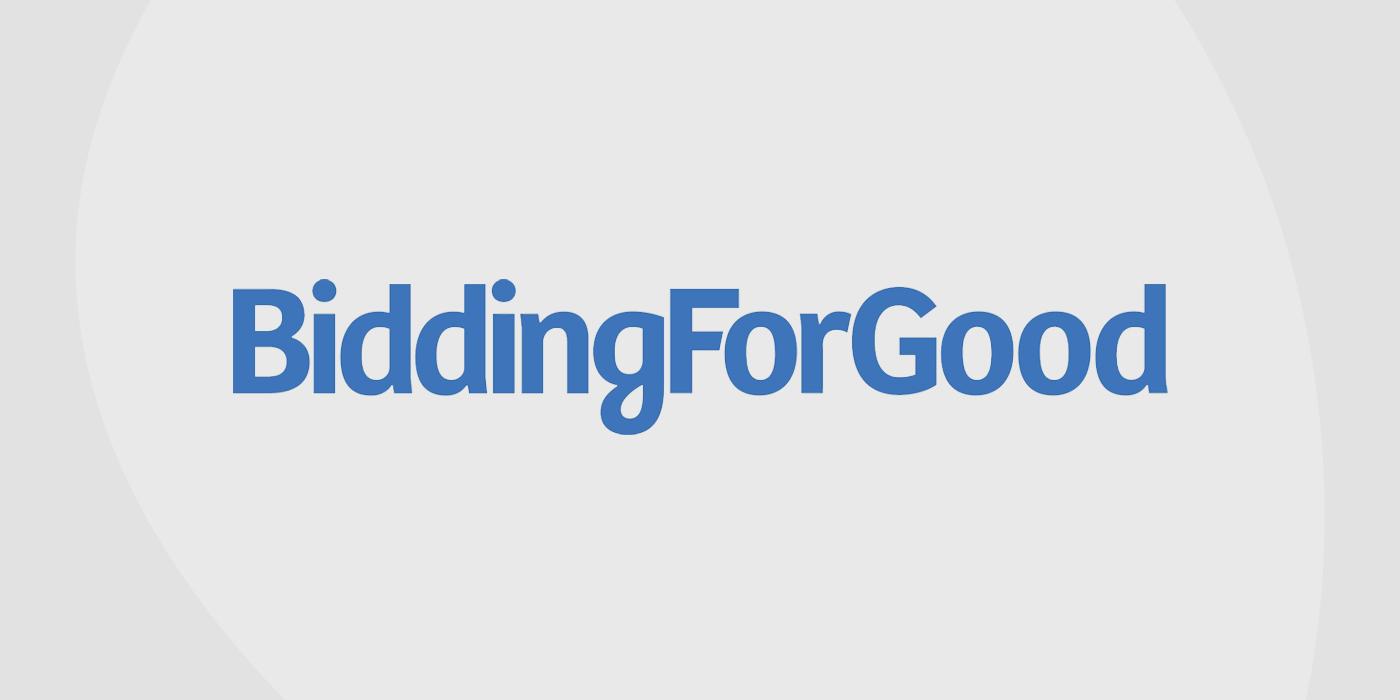 Logo for Bidding for Good platform